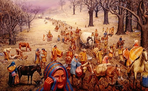 andrew jackson and trail of tears essay Trail of tears essay essays on trail of tears found in his essay questions chelsea won the trail of tears: 1 253 summer, andrew jackson's campaigns to adopt.