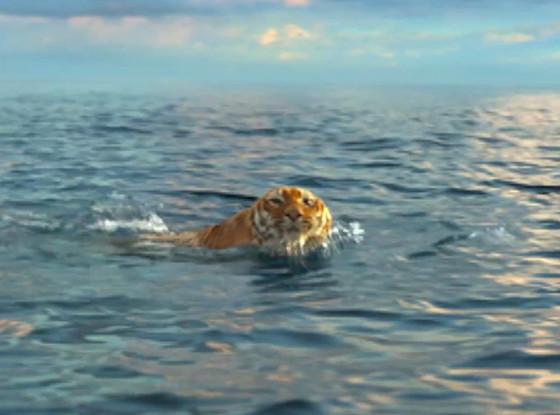 [Image: tiger-swimming.jpg]