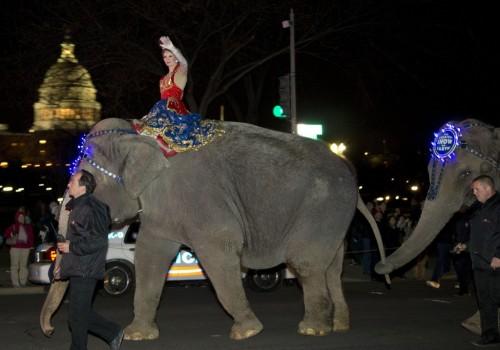 Ringlings_Elephant