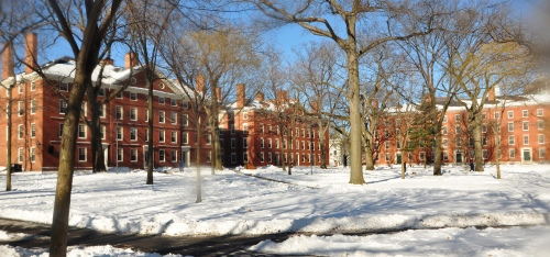 Harvard_yard_winter_2009j