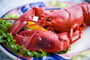 Sometimes you just need a good lobster. I'm from Boston. Trust me on this.