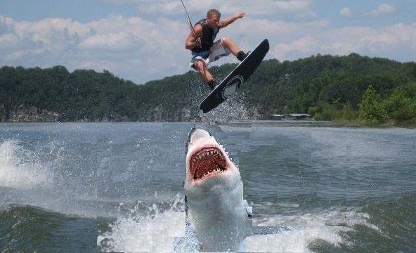 The Good Wife\u201d Jumps The Ethics Shark | Ethics Alarms