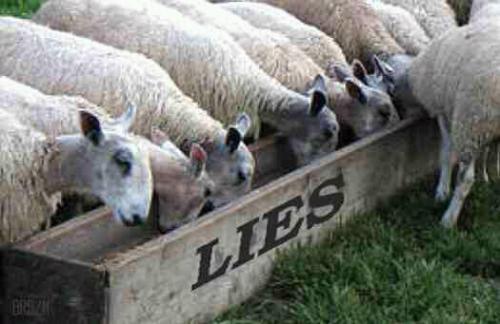 Lies2