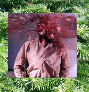 Thank you and Merry Christmas, Carl Palladino.