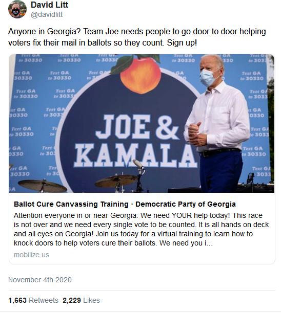 Georgia vote Count