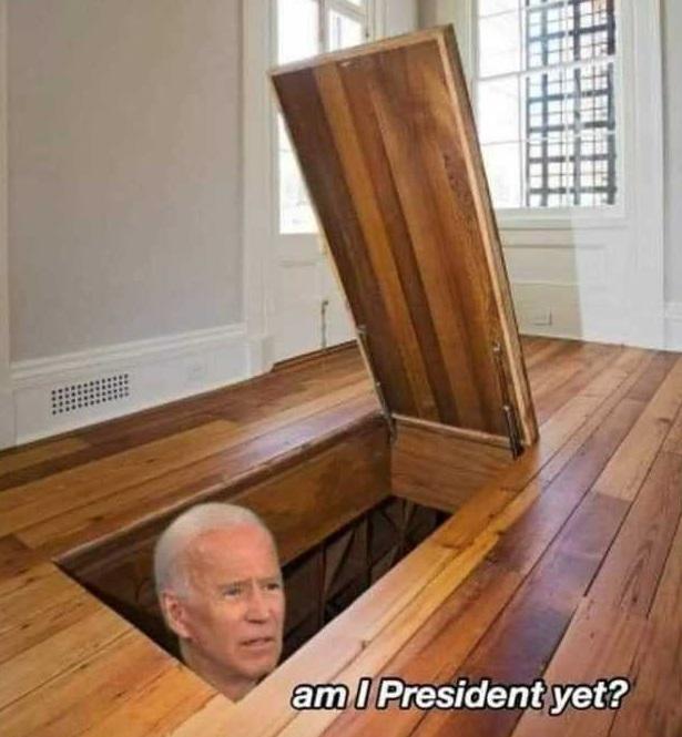 Hiding Biden meme