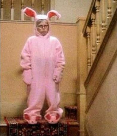 Ralphie bunny